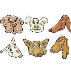 Cartoon funny dogs heads set vector image