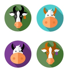 Cow icon vector