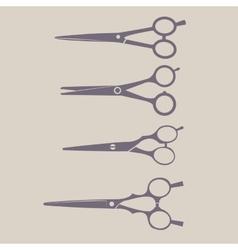 Professional Scissors Set vector image vector image