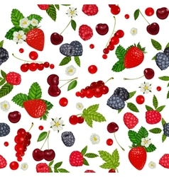 seamless pattern with summer berries vector image