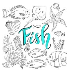 sketches fish set Hand drawn marine vector image