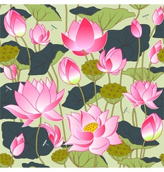 Blooming pink lotus flowers vector
