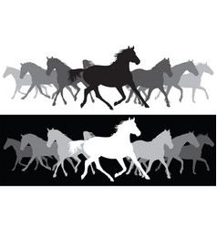 White and black trotting horses silhouette vector