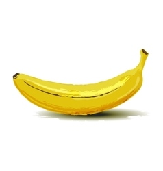 Banana fruit vector