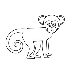 Brazilian monkey isolated icon vector