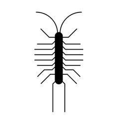Centipede millipede cartoon posing flat insect vector
