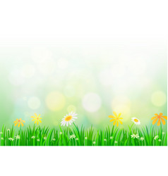 spring background with light vector image vector image