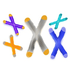 chromosome vector image
