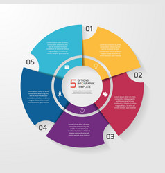 Circle infographic 5 options vector