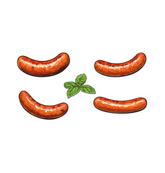 Hand drawn grilled barbequed meat sausages vector