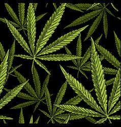 Seamless pattern with marijuana leaf vintage vector
