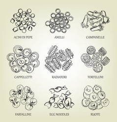 collection of different sorts of macaroni vector image