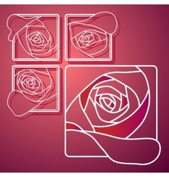 Llustration of white line rose in square vector