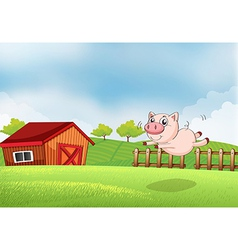 A pig jumping at the farm vector image vector image