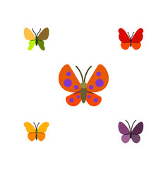 Flat butterfly set of violet wing butterfly moth vector