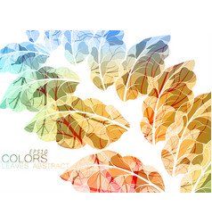 translucent leaves vector image