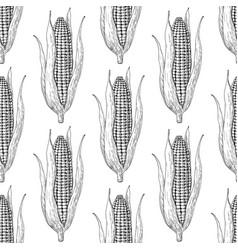 Corn cob hand drawn seamless pattern vector