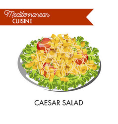 Caesar salad with whole tomatoes and cube crackers vector