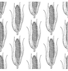 corn cob hand drawn seamless pattern vector image vector image