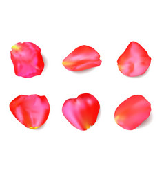 Red rose petals set realistic vector