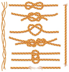 Set of ropes and knots vector