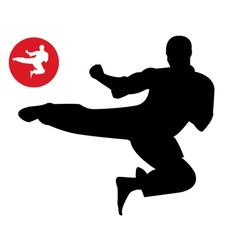 Karate in the jump vector image