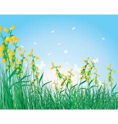 colorful grass background vector image vector image