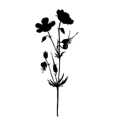Silhouette of drawing flowers vector