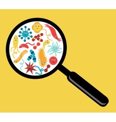 Bacteria and Viruses vector image