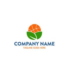 Basket ball logo vector