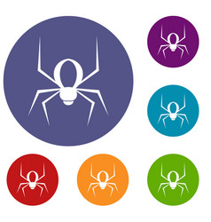 Spider icons set vector