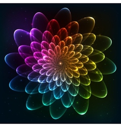Rainbow colors cosmic flower vector image