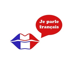 French flag lips vector