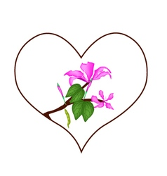 Pink hibiscus flowers in heart shape frame vector