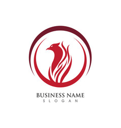 Falcon eagle bird logo template vector