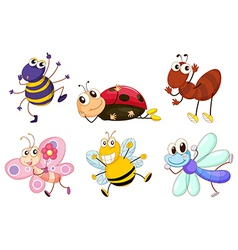 Different bugs and insects vector
