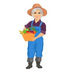 elderly gardener holding basket of vegetables vector image
