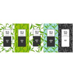 Organic tea frame labels vector