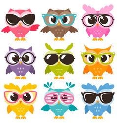 Set of colorful funny owls with glasses isolated vector