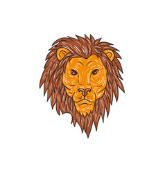 Male lion big cat head drawing vector