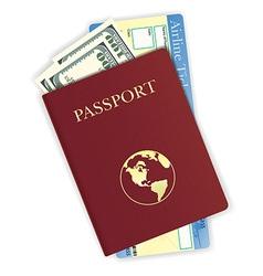passport 08 vector image