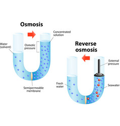 Osmosis and reverse osmosis vector