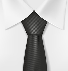 White shirt and black tie vector