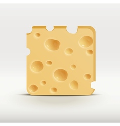 Web app icon of cheese vector
