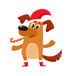 Funny dog character in christmas hat and boots vector