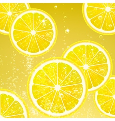 Lemonade with Slices Lemon vector image