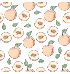 Peach with slice seamless pattern vector image vector image