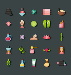 Spa utensils icons set vector