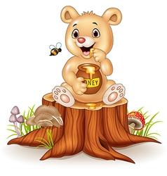 Cartoon funny baby bear holding honey pot vector