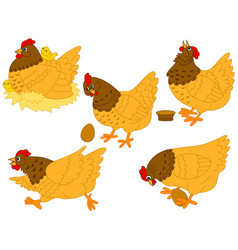 Set of hens chickens and eggs vector